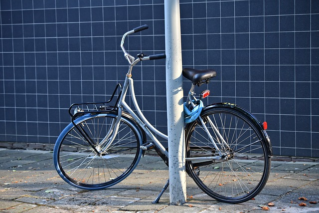 opřené jízdní kolo.jpg