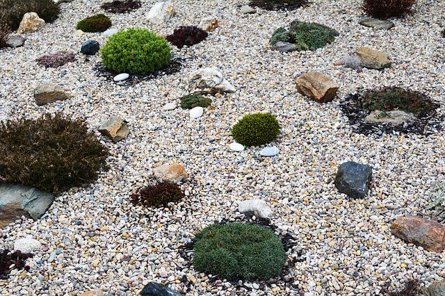 kamínky a skalničky.jpg